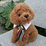 Cuello con corbata multicolor para mascotas especial Navidad, cumpleaños, celebración, bodas, fotografia, fiestas de OPEN BUY,