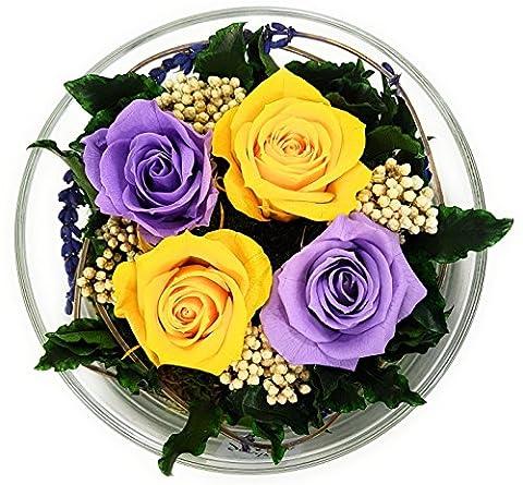 Rosen-te-amo Blumen-Strauß in der Vase aus ECHTE Konservierte Rosen –, Gesteck aus haltbare-Rosen – unser Blumen-Arrangement sind lange haltbar – Geschenk für die Freundin (Rund, Mehrfarbig-Lila-Gelb)