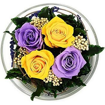 ewige rose haltbar 3 jahre konservierte rose die eine. Black Bedroom Furniture Sets. Home Design Ideas