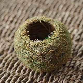 Asdomo Moosball, natürlich getrocknet, in Bonsaigrüner Farbe, Torfmoos, Pflanzsubstratball, hydratisierender Blumentopf für Gartentopfpflanzen