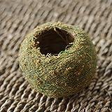 Asdomo Naturel sec mousse Boule bonsaï Vert Sphaigne Substrat Boule de plantation de hydratant en pot de jardin Pot de fleurs