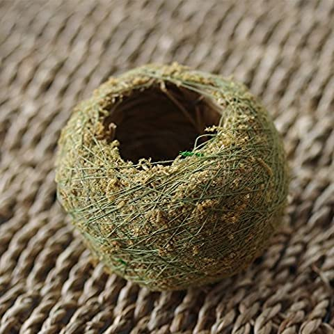 Toyfun Naturel Moss Boule bonsaï Vert Sphaigne Substrat