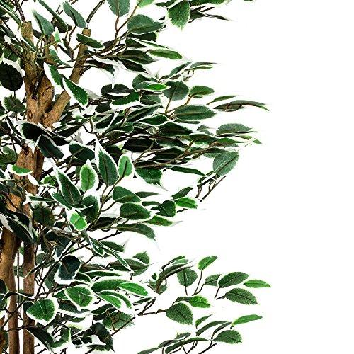 Großer grüner Ficus Baum, Echtholzstamm, Kunstbaum, Kunstpflanze, Dekobaum - Variante: 160 oder 190 cm - 3