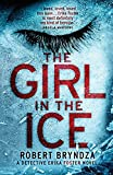 The Girl in the Ice: Vol.1: Volume 1 (Detective Erika Foster crime thriller novel)