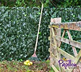 Sichtschutz aus PVC, Efeuhecke - 1m x 3m - Papillon™