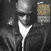 Parking Lot Symphony [Vinyl LP]