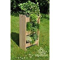 Verde giardino letto rialzato Premium Organic Herbal Torre, 100.0x 49.0X 29CM, naturale, LS, millilitri, gghbhh2