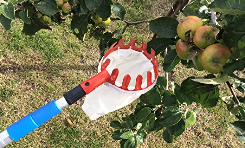deluxe-lightweight-telescopic-apple-fruit-picker