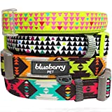 Blueberry Pet Soft & Comfy Multicolor Triangles Designer Lime Neoprene Padded Dog Collar, Neck 30cm-40cm, Small, Collars for Dogs