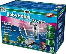 JBL Vasca per la deposizione delle Uova, Baby Home