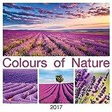 Colours of Nature 2017 - Bildkalender (42 x 42) - Naturkalender - Landschaftskalender
