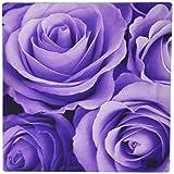 3drose LLC 20,3x 20,3x 0,6cm Maus Pad, weich lila violett Posen Bouquet (MP _ 27564_ 1)
