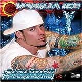 Vanilla Ice Hip-Hop & Rap