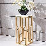 Flower Stand, Edelstahl gebürstet Titan plattiert Marmor-Platte mit wenigen Blumen Seitenwand Bonsai Continental schlichte moderne Balkon Innenhaus Metall Rahmen Dauerhaft Geschirr Halterung Halter Gold+white