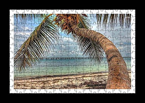 puzzle-style-pre-assembled-wall-print-of-palm-tree-on-a-sandy-beach-by-lisa-loft