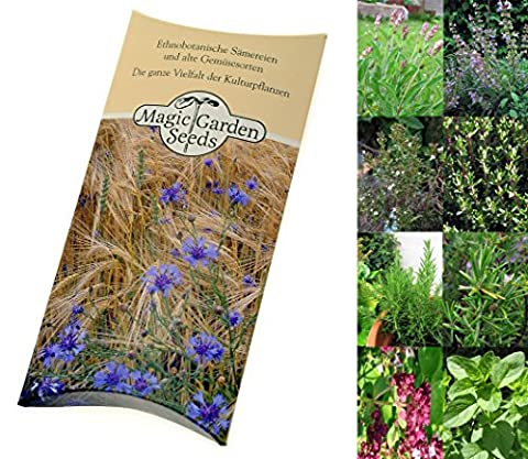 Seed kit: 'BBQ herbs', 4 aromatic herb varieties typically used for marinades and to season your steaks and barbecue meat, the perfect gift for all passionate BBQ chefs