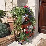 Plant Theatre Organises Pot Plants and Herbs Stunning Tiered Display Metal – Bronze