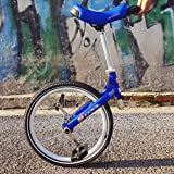 Monocicli 50 cm carriola equilibrio auto sportiva auto bambini adulto monociclo fitness viaggi acrobazie monociclo bicicletta per perdere peso, viaggiare, migliorare la forma fisica Biciclette senza p