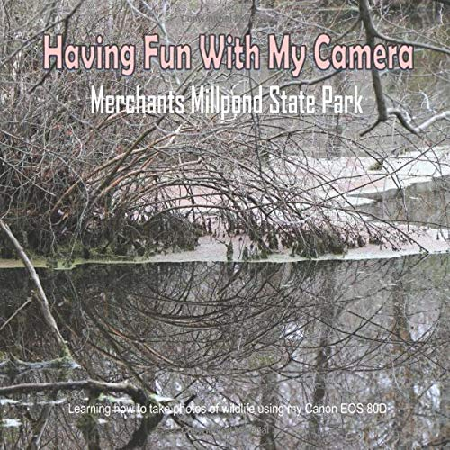 Having Fun With My Camera (Merchants Millpond State Park): Learning how to take photos of wildlife using my Canon EOS 80D