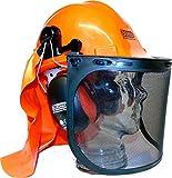 Casque de sécurité pour tronçonner ou travailler en forêt - Protège-oreilles, visières et protection du cou - ESENO Industriel