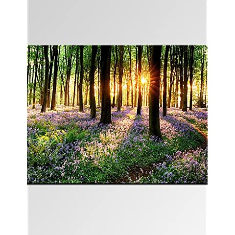 ZSQ bella foresta di lavanda Digital Tela stampe camera da letto moderno decor Art Stampa pronto ad appendere #2672