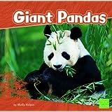 Giant Pandas (First Facts: Bears)