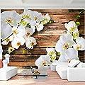 Fototapete Orchidee - Vliestapete - Wandtapete - Vlies Phototapete - Wand - Wandbilder XXL - !!! 100% MADE IN GERMANY !!! Runa Tapete 9057aP