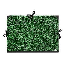 Clairefontaine 32600C Cartella Portadisegno, A2+, Verde