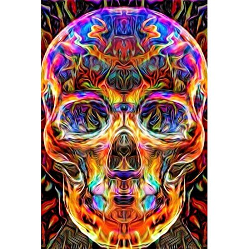 DIY 5D Diamond Painting by Number Kit, Full Diamond Skull Rhinestone Embroidery Cross Stitch Arts Craft for Canvas Wall Decor