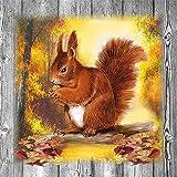 Confezione da 20tovaglioli di carta a strati, 33x 33cm–risparmio food (scoiattolo)