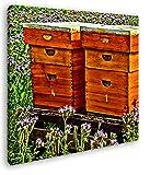 deyoli Bienenstock auf der Blumenwiese Format: 40x40 Effekt: Zeichnung als Leinwandbild, Motiv fertig gerahmt auf Echtholzrahmen, Hochwertiger Digitaldruck mit Rahmen, Kein Poster oder Plakat