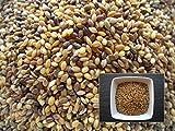 Moha-15 grammi. Setaria Italica-Moha-(concime Green manure), colore: verde