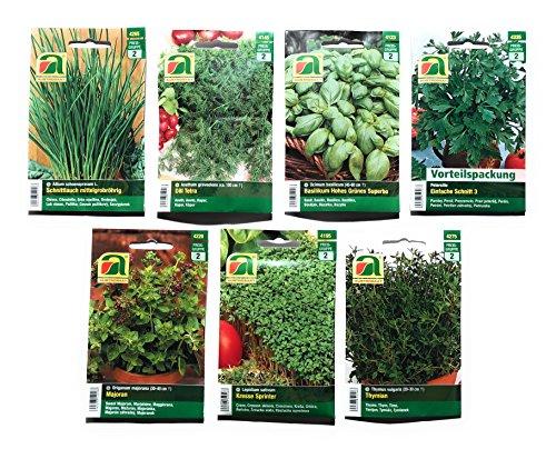 Gamma del 7 varietà di semi di erbe del hildegard   set iniziale   adatto a principianti e professionisti