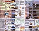 Vulkanismus. Ursachen - Verbreitung - Erscheinungsformen. Poster. (130 x 110 cm) - Berthold Wiedersich