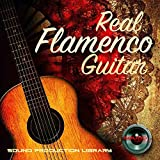 FLAMENCO GUITAR - Large Unique Original Samples/Loops Studio Library on DVD or download