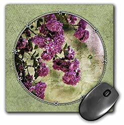 3dRose Beautiful Garden Roses - Inspired Floral - Vintage Style, Mouse Pad, 8 by 8 inches