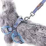 DogHelios Gepolstertes Hundegeschirr verstellbar 3M-Reflektierend atmungsaktiv ohne Zugkraft Mittelgroß Hellblau