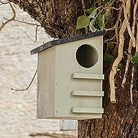 CKB Ltd® Squirrel House écureuil Boîte de nidification maison en abris de faune sauvage en bois de pin