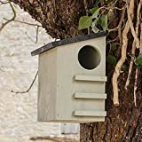 CKB Ltd® Ardilla nido fabricado en madera de pino, casa al aire libre refugio de vida silvestre