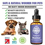 Pets Purest 100% Natural Anti-Parasitic Wormer | For Dogs, Cats, Poultry, Birds, Rabbits & Pets | Effectively Removes All Intestinal Parasites & Worms, Roundworm, Hookworm, Whipworm, Tapeworm, Heartworm, Lungworm & Liver Fluke | 1-2 Year Supply | Improves Intestinal Health | No Nasty Hidden Chemicals