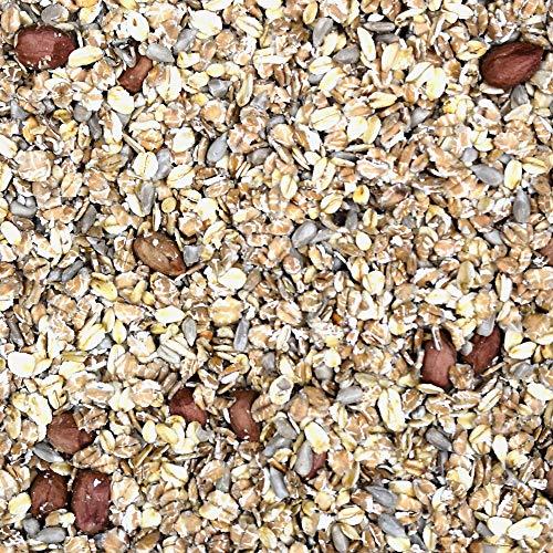 Birds & Friends Nourriture pour Oiseaux Sauvages, Nourriture pour Oiseaux, Oiseaux Sauvages incluant graines de Tournesol et Flocons d'avoine, 3,15 kg