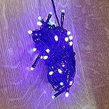 LED Lichterkette 40er 5m blau / schwarz innen 468-49