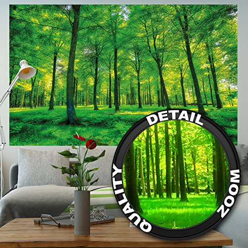 Price comparison product image Wallpaper Trees – wall picture decoration nature pure landscape forest glade summer relaxation sun plants flora forest ferns I paperhanging Wallpaper poster wall decor by GREAT ART (82.7x55 Inch / 210x140 cm)