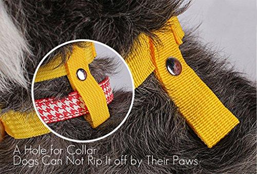 Hund Maulkorb mit Klettverschluss – Gepolstert und Einstellbar - 3
