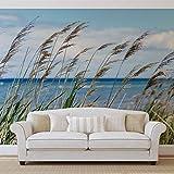 Strand See Sand Natur - Wallsticker Warehouse - Fototapete - Tapete - Fotomural - Mural Wandbild - (1976WM) - XXXL - 416cm x 254cm - VLIES (EasyInstall) - 4 Pieces