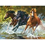 slylive dream-hand-painted Öl Gemälde, DIY Ölgemälde von Zahlen Acryl Drei, die Pferde Zeichnen auf Leinwand Decor gerahmt-Wandbild abstrakt modern art Gemälde für Wand Dekorationen Home Dekorationen