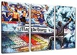 Ultras magdeburgCollage, 3-Teiler Format: 120x80, Bild