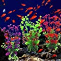 Plastic Artificial Landscaping Water Grass Decoration for Aquarium Fish Tank from Greenlans