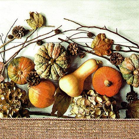 20 Servietten Muddle of Pumpkins - Alles voller Kürbisse / Herbst 33x33cm