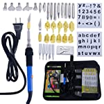 Pyrography Pen Wood Burning Kit Soldering Iron Electric 60W for Adults,50pcs Temperature Adjustable with Woodburning Tips...